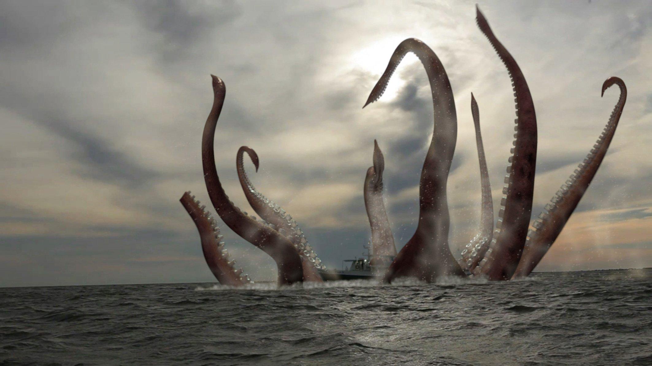 Картинка гигантского кальмара кракена