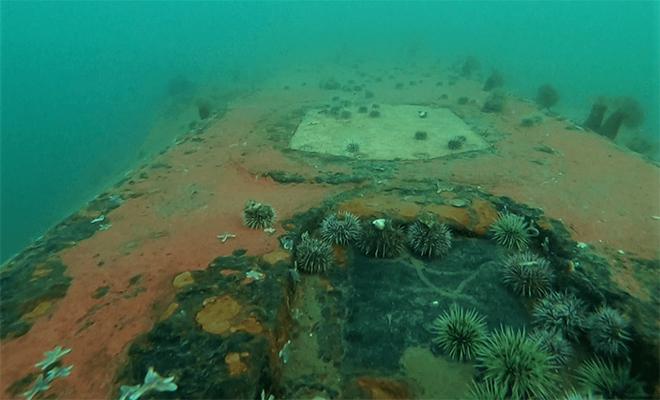 В бухте Нагаева под Магаданом уже почти 80 лет под воду отправляют корабли. На сегодня их больше 20