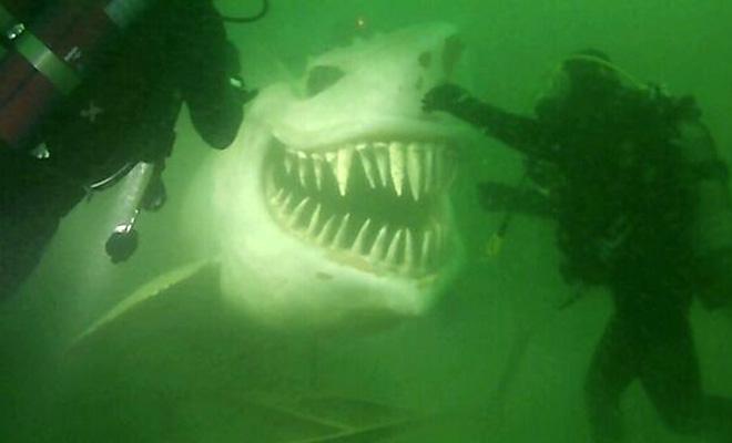 Каменная акула и еще 4 искусственных объекта, найденные под водой дайверами