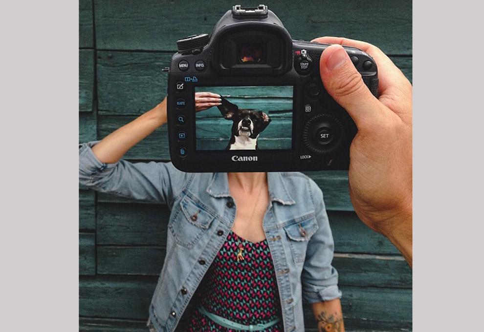медведь интересные фишки для фотографа же, тем временем