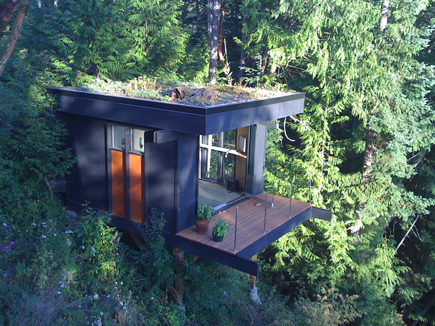Treetop office
