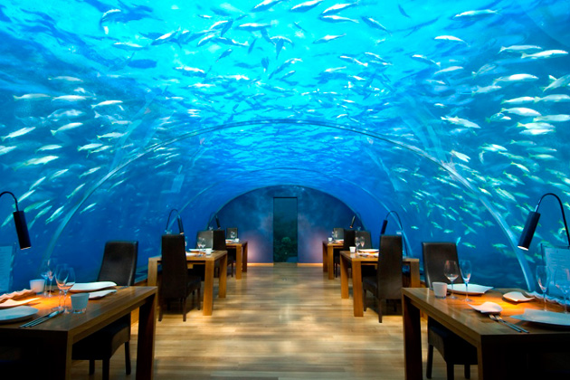 Ithaa, Hilton Maldives Resort & Spa, Мальдивы