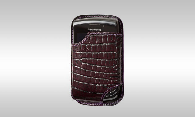 BlackBerry Torch Cases by Chapurin