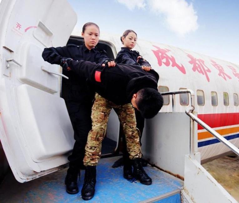 Фото стюардесса в миниюбке